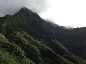 The valley after Hanakapi'ai