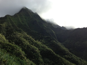 The valley after Hanakapi'ai