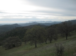 Coe doesn't have many sweeping views due to moderately high hills and steep valleys.