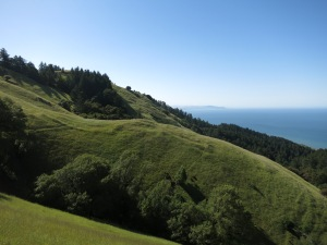 Hiking on Coastal Trail for the north approach to Mt Tam