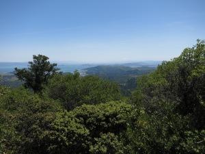 View from Mt Tamalpais